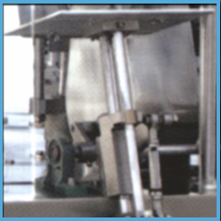 Automatic Preformed Bag Filling and Sealing Equipment