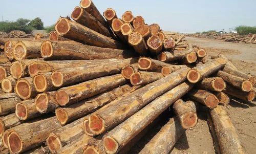 African Wood Logs