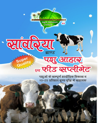 supplement cattle feed