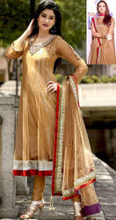 Light Brown Net Churidar Kameez With Dupatta