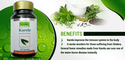 Herbal Supplements for Blood Sugar