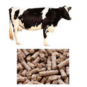 Cattle Milk Pellets