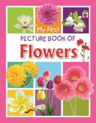 Picture Book of  Flowers