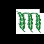 Monsoon Agro Bio Ltd.