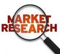 Market Survey & Product Launch Services