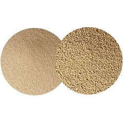 saccharomyces cerevisiae dry yeast