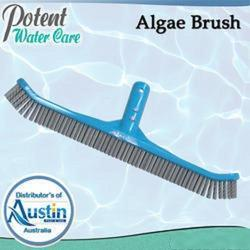 Pool Cleaning Brush