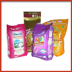 Plastic Bag with Printing for Bulk Packaging