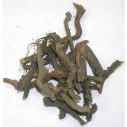 Bisfayej Root / Polypody Root