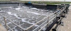 O&M of Sewage Treatment Plant