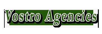 Vostro Agencies