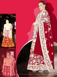 Beautiful Lehenga Saree