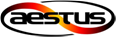 Aestus Induction India Private Limited
