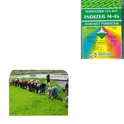 Mancozeb Fungicide for Agriculture