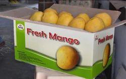 Sapota Mango
