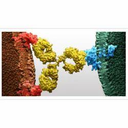 Biologics Products