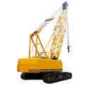 Crawler Crane Rental Services
