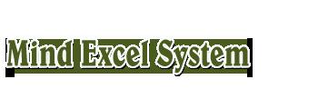 Mindexcel Systems