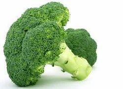 Broccoli Powder (Broccoli Extract)