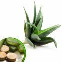 Aloe Vera Extract f...