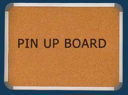 Pin Up Board