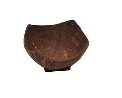 Hotel Coconut Shell Bowl