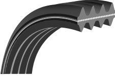 Double Poly V-Belt