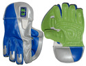Rs Encore (Wicket Keeping Gloves)