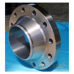 SS Weld Neck Ring Flange