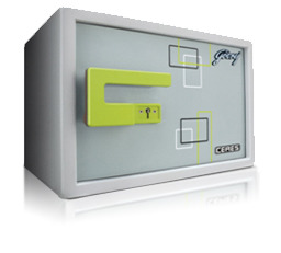 Godrej Safe Ceres V1 Grey Mumbai