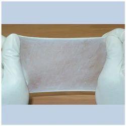 Kollagen - Collagen Membrane in Wet Form