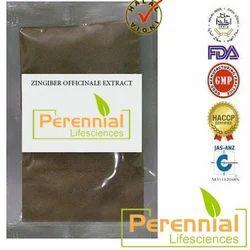 Zingiber Officinale Extract Powder