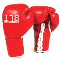 Professional Fight Gloves