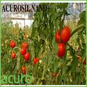 Acurosil Nano+ : Horticulture
