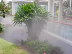 Fogging Systems