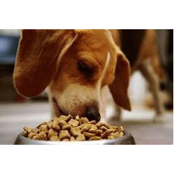 pet food ingredient