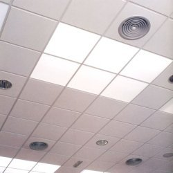 Suspended Acoustical Ceiling