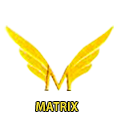 The Matrix Enterprises