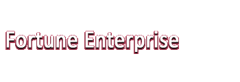 Fortune Enterprise