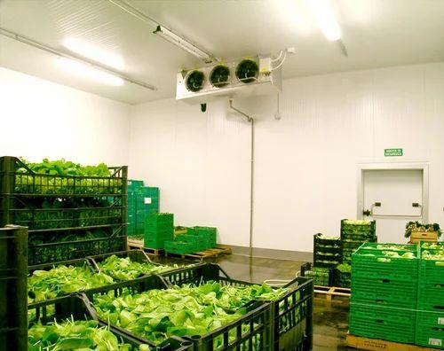 Service Provider Of Perishable Goods Warehousing Amp Food