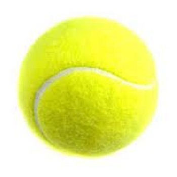 Promotional Items Promotional Tennis Ball Manufacturer From Meerut