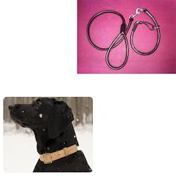 leather collar for dog