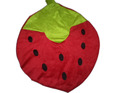 Straw Berry Pillow