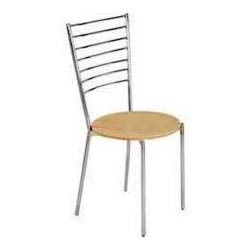 Delightful Stainless Steel Chair
