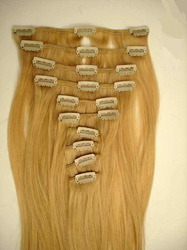 Blonde Clip on Hair Extensions