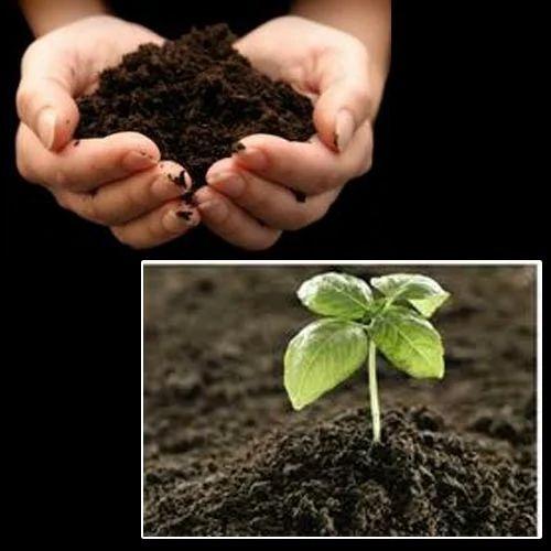EM- Plus Bio Fertilizers