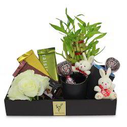 valentine-plant-hamper