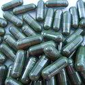 Protein Capsules
