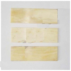 Unbleached Bone Blanks