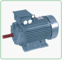 Squirrel Cage Motors Suppliers Manufacturers Amp Dealers In